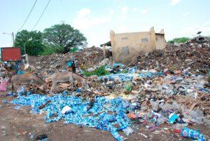 Photo of Plastik Toxik Partout : les artistes vent debout contre la nuisance environnementale