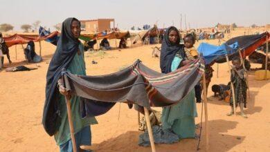 Photo of Insécurité et accidents mortels au Mali : Voilà l'alerte hebdomadaire du Réseau WANEP